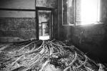 Haus der Synapsen