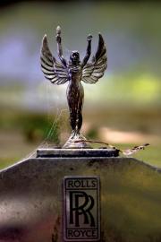 Autofriedhof (c) Ulrike Kaulfuß
