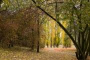 28.10.18 Volksgarten_19