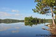 Ruhe, soweit das Auge reicht, Algonquin Nationalpark
