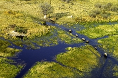 Wasserstraßen, Okawango-Delta