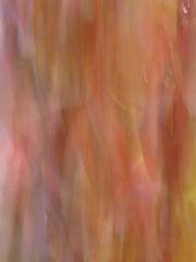 Herbst (c) Annette Ulrich