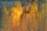 Herbst (c) Ulrike Kaulfuß