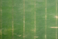 Luftaufnahme (c) Hans Peter Eckstein