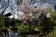 Japanischer Garten, Leverkusen