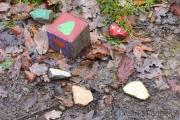 Fundstücke im Wald