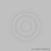 Selbstportrait der Kamera (c) Astrid Padberg