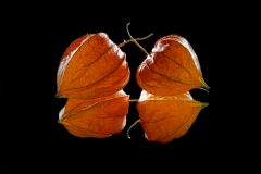 Spiegelnde Herzen
