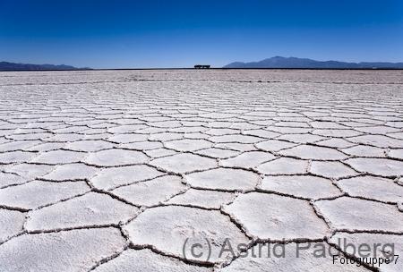 Wüstenschach