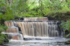 Wasser marsch (c) Astrid Padberg