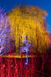 Winterleuchten Westfalenpark